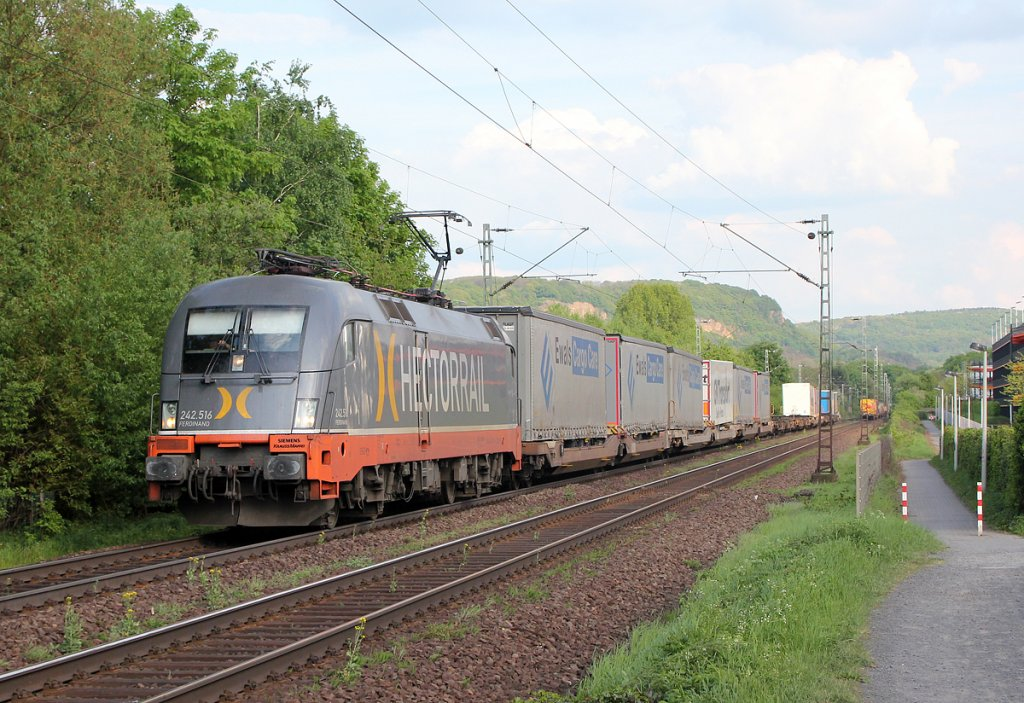 Hectorails 242.516  Ferdinand  in Bonn Limperich am 06.05.2013
