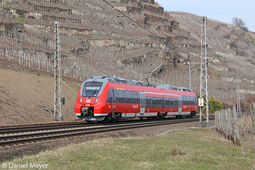 Der 442 504 in Winningen (Mosel) am 01,04,13